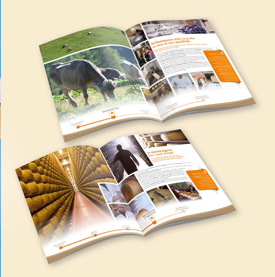 Impagineato interno brochure Trentingrana